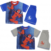 Spiderman beach set