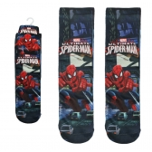Spiderman boys socks