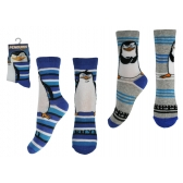 Penguins of Madagascar boys socks