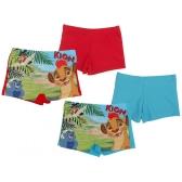 Lion King swim boxer