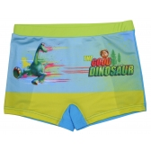 The Good Dinosaur swimming trunks