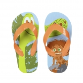 The Good Dinosaur flip flops